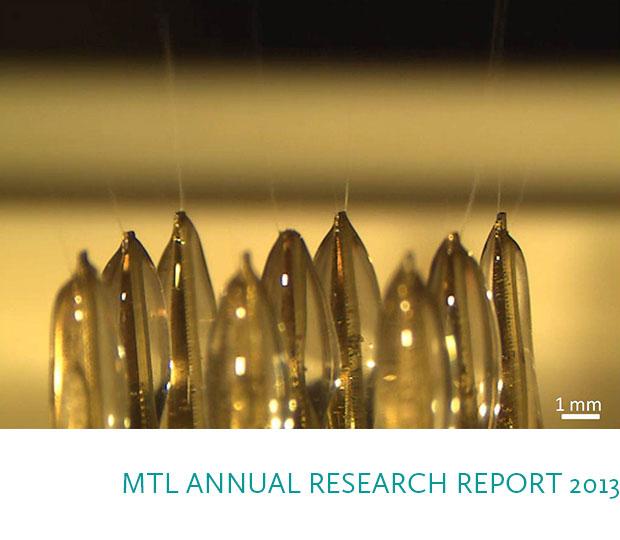MTL ANNUAL RESEARCH REPORT 2013: Image, P. Ponce de Leon